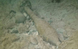 Divers dispose of unexploded projectile in Sagunto, Valencia