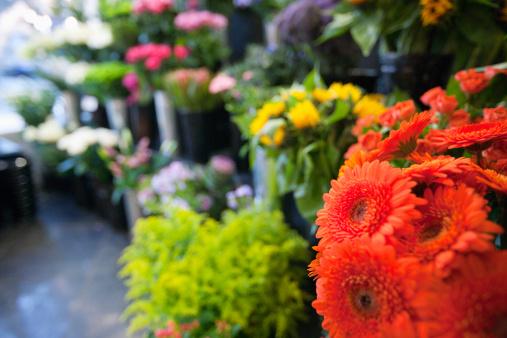 1st June, Pilar de la Horadada flower market