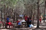 Municipal camping area, Lo Albentosa, Torrevieja