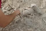 MARQ archaeologists uncover Argaric graves in Callosa de Segura