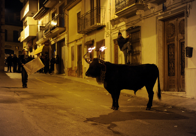 Valencia Today weekly news round-up, 2nd to 8th August 2014