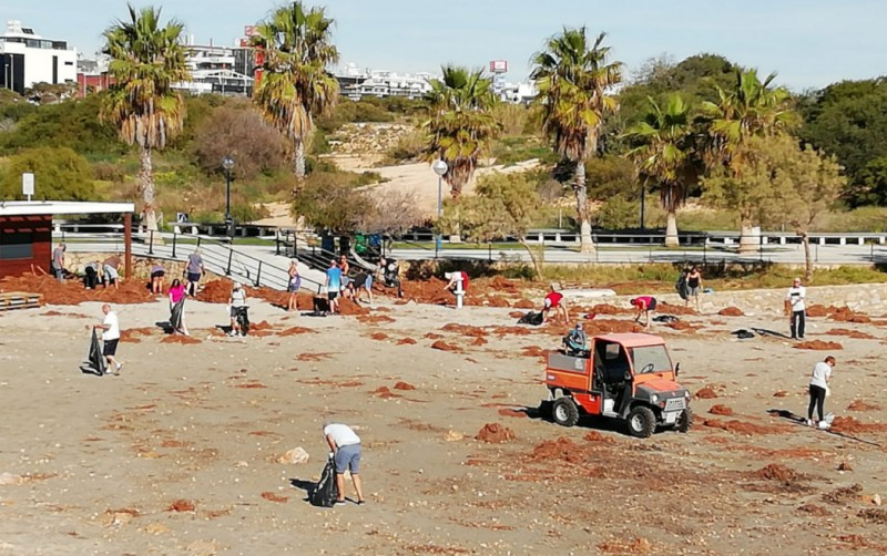 Orihuela Town Hall contracts extra beach cleaning services