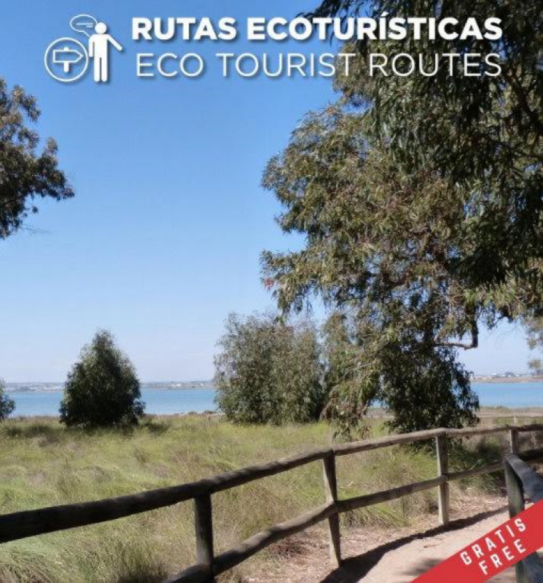 Until May 2017, free guided walks in the natural park of Torrevieja and La Mata
