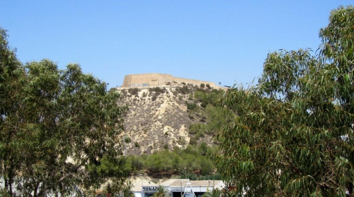 Guardamar del Segura clears dead wood from the hillside below the castle