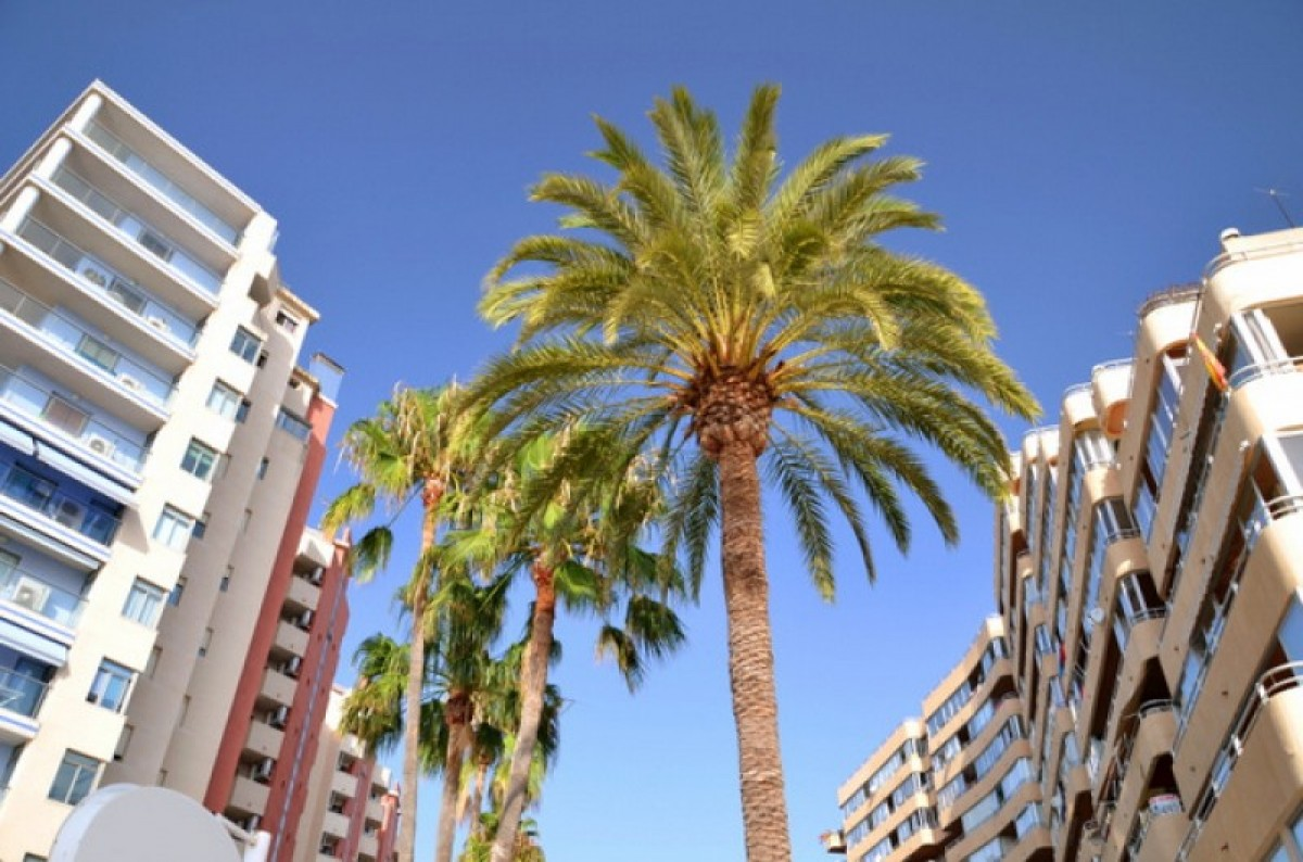 Alicante property sales rose by 9.5 per cent in 2016