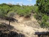 A million euros to develop Guardamar del Segura archaeological site