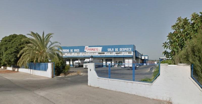 Three injured as Granja de Rocamora slaughterhouse roof ceiling caves in