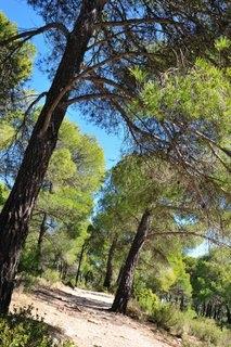 General Information Sierra Espuña
