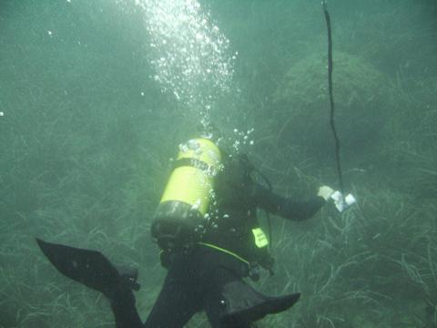 <span style='color:#780948'>ARCHIVED</span> - Cartagena anti-mines divers destroy 300 kilo Civil War mine