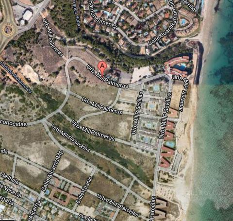 Playa Mil Palmeras Orihuela