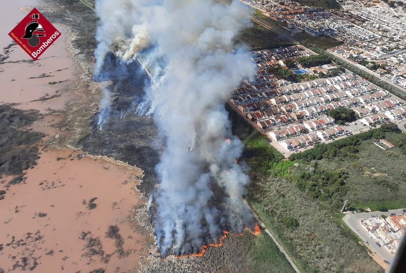 <span style='color:#780948'>ARCHIVED</span> - Guardia Civil investigation underway to clarify cause of fire in Torrevieja Lagunas de la Mata park