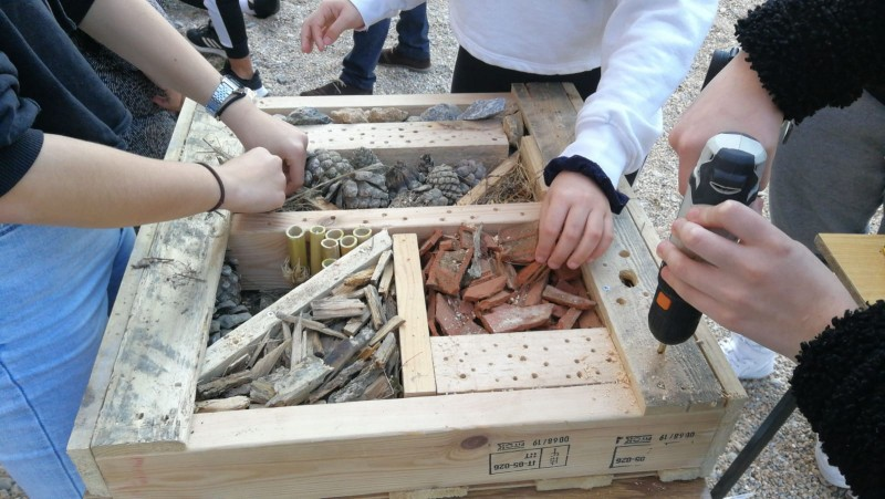 <span style='color:#780948'>ARCHIVED</span> - Torrevieja joins environmental agreement to protect wild bees