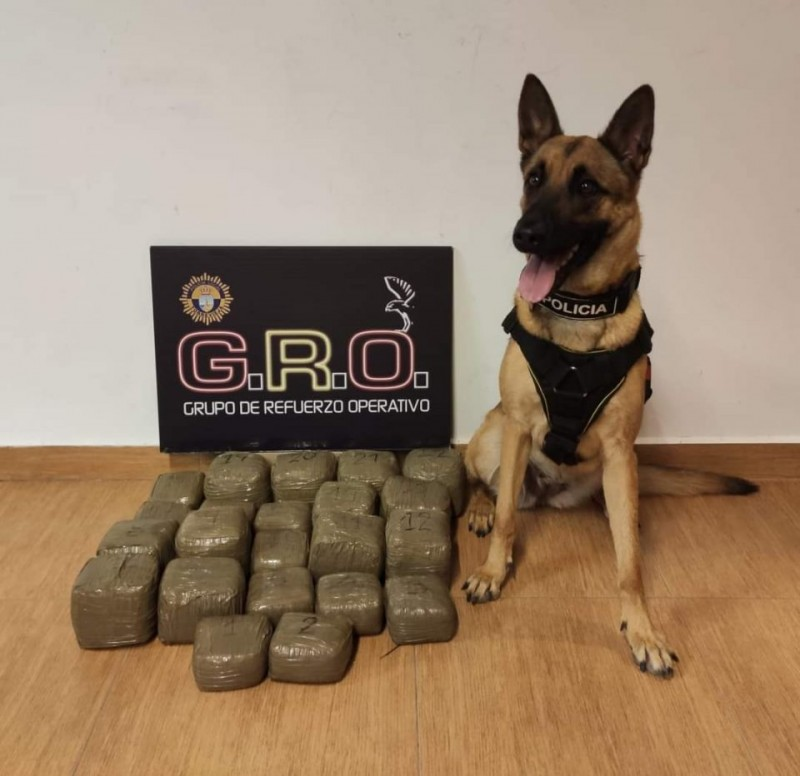 <span style='color:#780948'>ARCHIVED</span> - Police dog sniffs out cache of drugs off Torrevieja coast