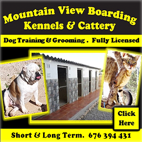 Mountain View Kennels